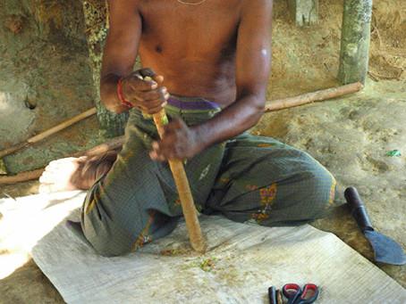 UNIDO Selects Inbwnd to Develop Sri Lanka's Ceylon Cinnamon Global Marketing Plan