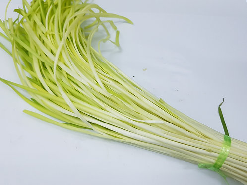 YELLOW CHIVES 韭皇