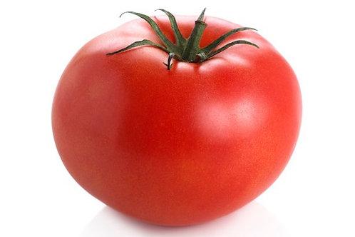 LOCAL TOMATOES 番茄