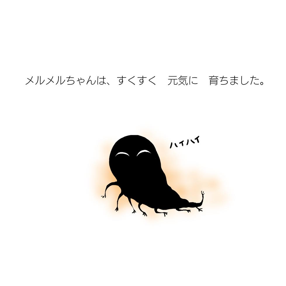 merumeru-02.png
