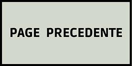 PAGE PRECEDENTE 2.png