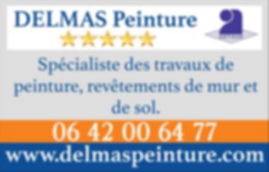 delmas_peinture_5_étoiles_2.PNG