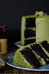 chocolate cake with matcha-mint frosting