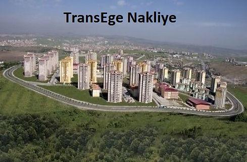 gümüşova taşımacılık TransEge.jpg