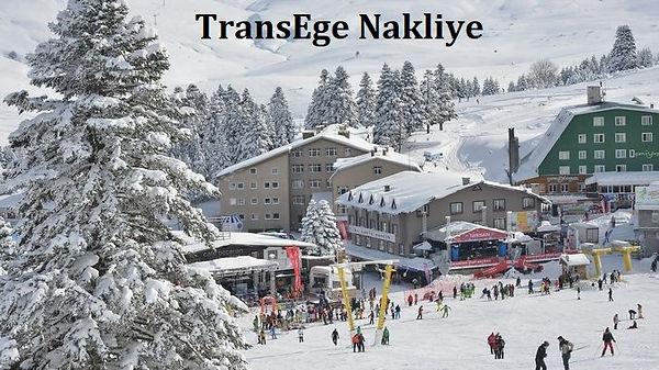 TransEge Bursa taşımacılık.jpg