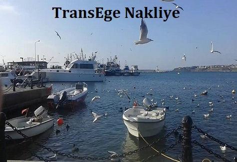 TransEge Silivri Nakliye.jpg