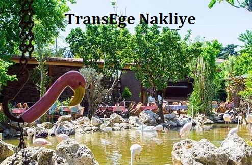 TransEge_Çatalca_Nakliye.jpg
