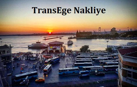 TransEge Kadıköy Nakliye.jpg