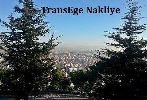 TransEge Pendik Nakliye.jpg