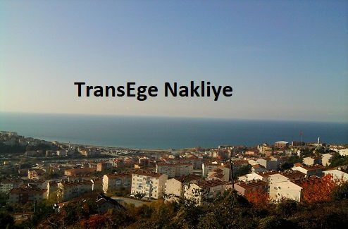 alaplı taşımacılık TransEge.jpg