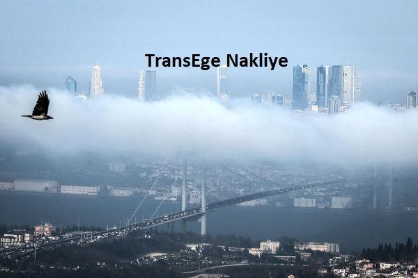 TransEge Sisli Nakliyeci.jpg