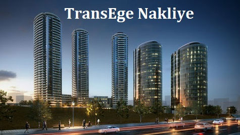 TransEge Kartal Nakliye.jpg