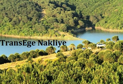 TransEge Sultangazi Nakliye.jpg