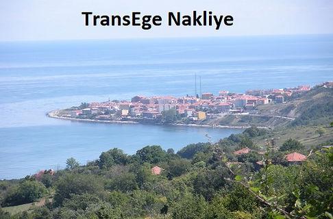 türkeli taşımacılık TransEge.jpg