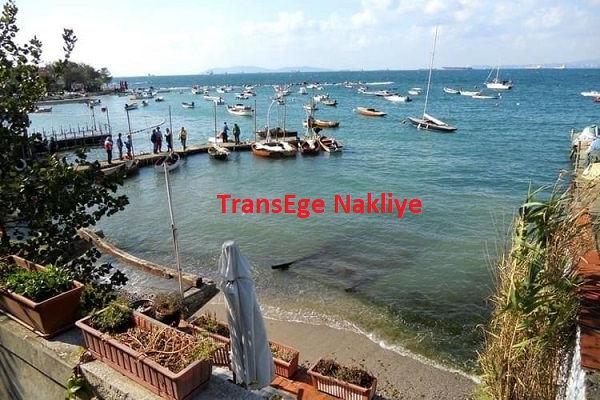 TransEge Tuzlada Nakliyeci.jpg