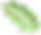 fern leaf transparent.png