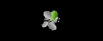 Cherrise Boucher logo