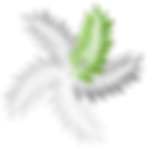 Cherrise Logo 2019.png