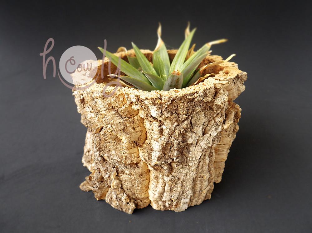 100% Natural Cork Bark Planter