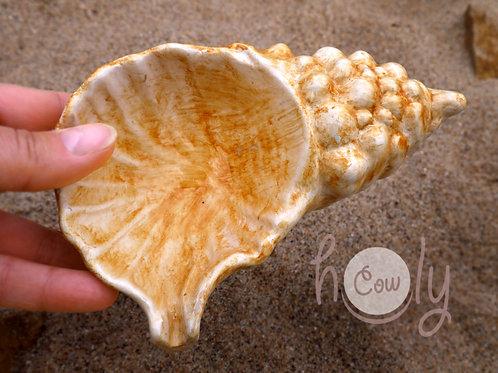 Large Ceramic Sea Shell Dish