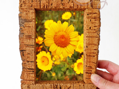 Display Your Moments in a Beautiful Eco Friendly Cork Photo Frame