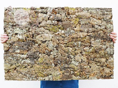 Large Eco Friendly Natural Cork Bark Tiles