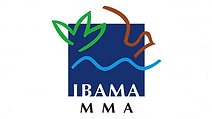 Site-IBAMA.png