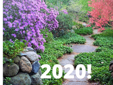 Use these 4 Steps to Guide You in Creating Your     Successful 2020!