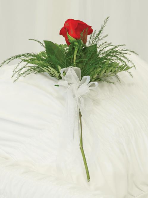 Pamětní růže