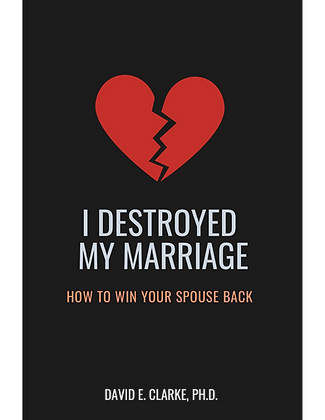 I Destroyed My Marriage - ebook