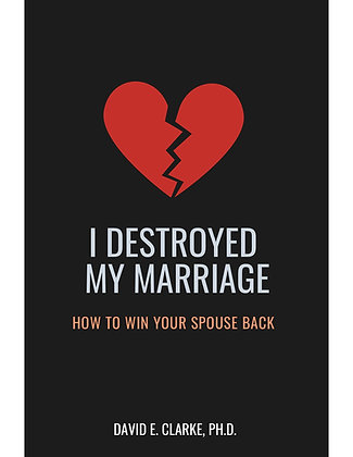 I Destroyed My Marriage -Paperback