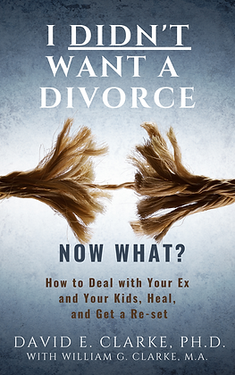 I Didn't Want a Divorce, Now What?