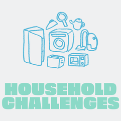 Household Challenges.png
