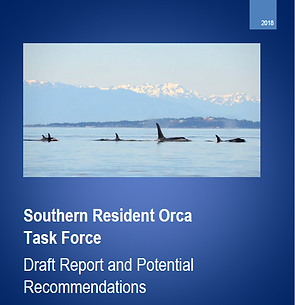 Orca Task Force Report