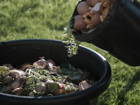 Making Compost: An Introduction
