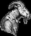 TPG-Goat-BW-transparent.png