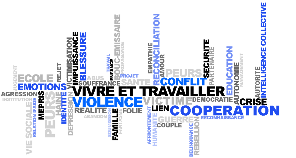 jerome voisin therapie sociale, dijon, gestion violence cooperation