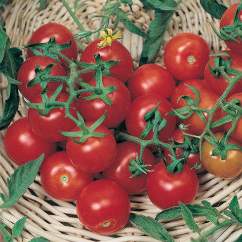 Red Cherry 100