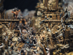 Models by Avatars of War and Megalith Games, Terrain by Printable Scenery