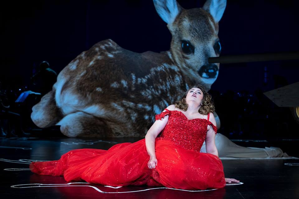 Don Carlos Arie vor Bambi