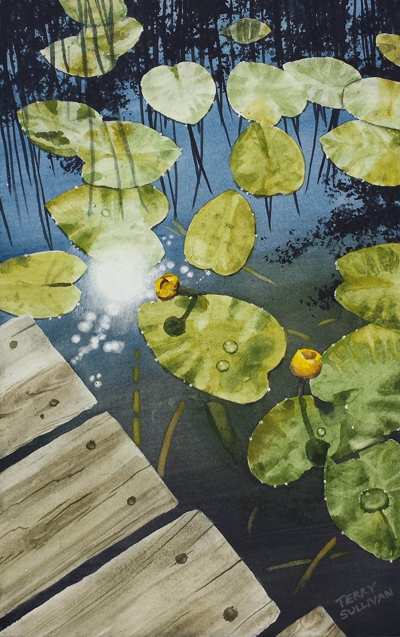 Port Wing Lily Pads Watercolor Paint