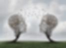 tree-bird-share_0 (1).png