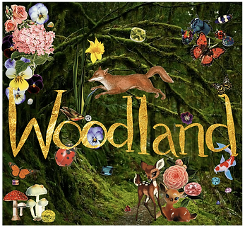Woodland Illustration, nature inspired gold jewellery universe, mystic forest, mystic woods