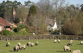 Braishfield Village.jpg