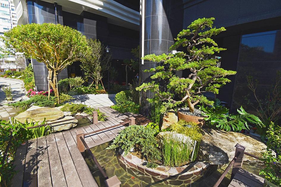 碧波白一楼日式花园7.jpg