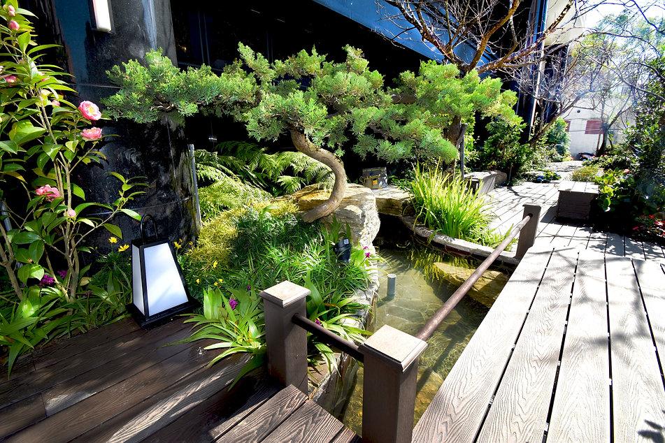碧波白一楼日式花园6.jpg