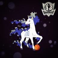 Rapidash x Dallas Mavericks