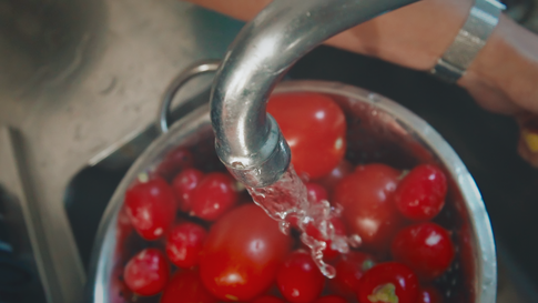 Plant based food experiences