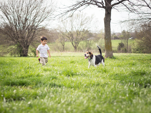 Welcoming Spring: 4 must-take photos of your littles