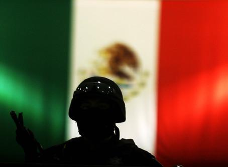 La Problemática de la Profesionalización de los Intigrantes del Sistema Nacional de Seguridad Públic